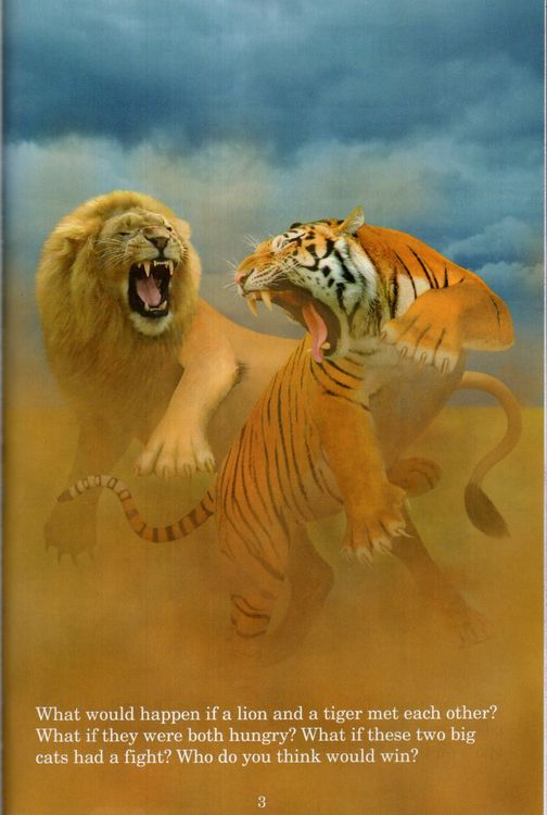 Lion vs Tiger ( Who Would Win? )