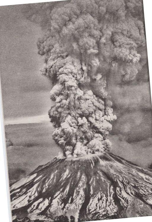 I Survived the Eruption of Mount St 1980 Helens I Survived #14