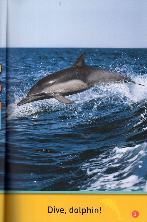 b26f2787 Dive Dolphin ( National Geographic Kids Readers Level Pre-Reader )