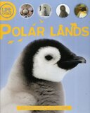 Polar Lands ( Lifecycles ) (Hardcover)