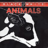 Animals ( Black and White ) (Board Book)